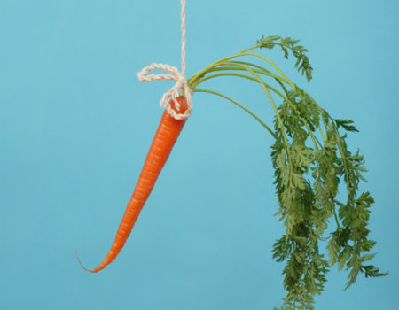 Chasing The Carrot Of Tomorrow