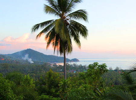 Finding a Five Dollar Bungalow in Thailand