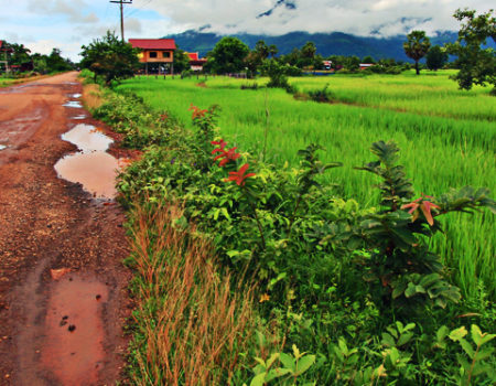 An Adventure on Two Wheels in Laos