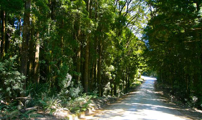 Tasmania Road