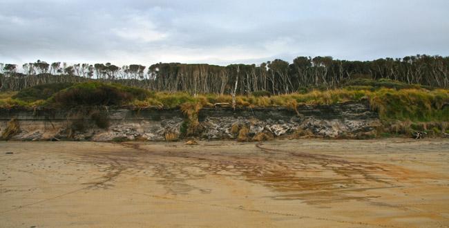 Tasmania_Wild_11