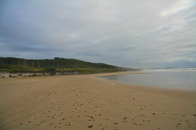 Tasmania_Wild_12